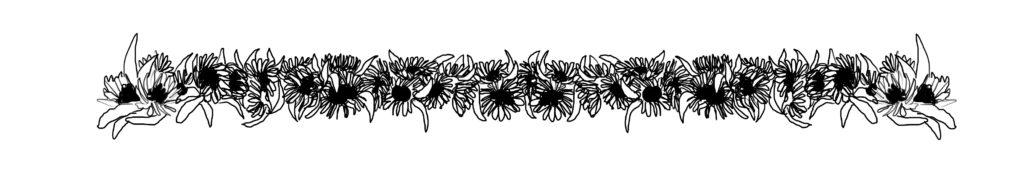 De illustratie is  een tekeningen van  38 zonnenbloemen op een rij zonder steel. Uitvoering is in wart witte lijntekening. Gewerkt in procreate tekenapp op de iPad pro