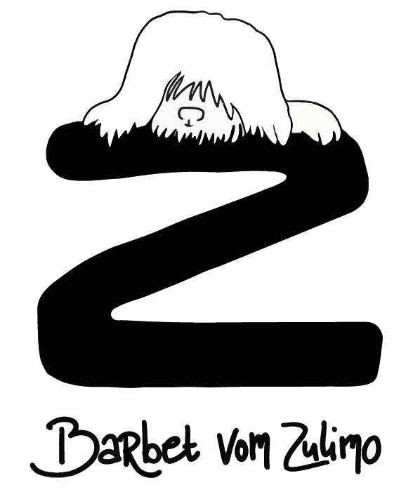 BARBET von zulemo franse waterhond